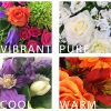 Colour ways - vibrant pure cool or warm