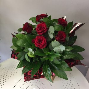 red, roses, hand tie, valentine's,